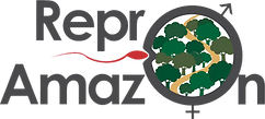 logo reproamazon.png