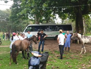 Ação do Cavalo de Tração