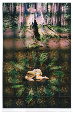 Melanie.Collage_website.jpg