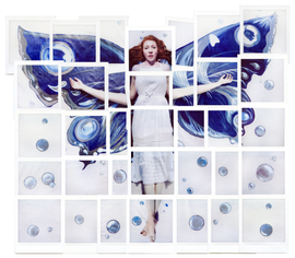 ButterflyCollage.png