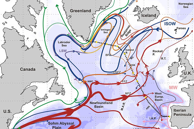 The northern North Atlantic Ocean mean circulation in the early 21st Century