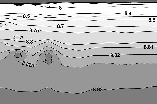 Warm intrusions in the intermediate layer (150–500 m) of the Black Sea eastern gyre interior