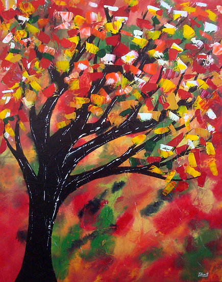 'Autumn Blaze' Maple,SOLD!