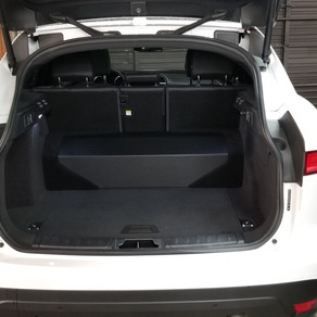 Jaguar Subwoofer
