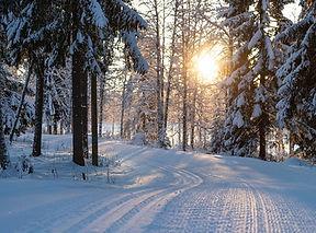 ski-tracks-4763028_1280-1-1.jpg