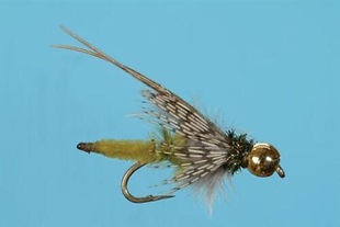 Bead Head Extended Body Olive Caddis Pup