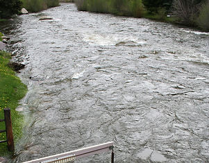 Taylor River at Almont Gauge.jpg