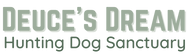 Deuce's Dream Logo (1)_edited.png