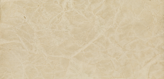 Texas Quail Forever Website.png