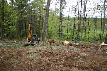 Site clearing, excavation