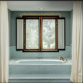 Master bath/shower before