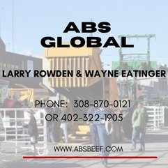 ABS GLOBAL.png
