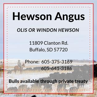 Hewson Angus.png