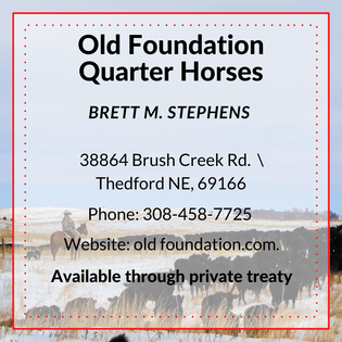 Old Foundation QH.png