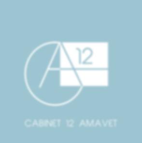cabinet 12 amavet.jpg