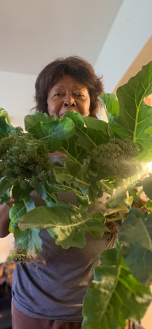 19. Home grown collards from my Son In L