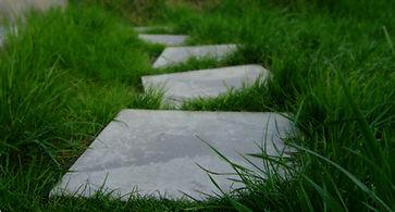 stepping-stones-1229768-1598x856.jpg