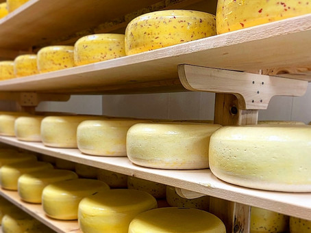 Cheesy Business; Alberta Gets a New Artisanal Cheese Producer