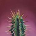 Mauve Cactus- Pastels