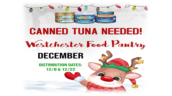 Ann - Food pantry tuna.PNG