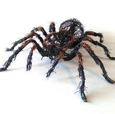 "Daniel Schmidt ""Mexican Red-Knee Tarantula (Brachypelma hamorii)"" Steel and copper wire $130"