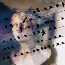 """Patricia R Stockman """"Classical Notations, 1"""" Digital photomontage printed on acrylic $275"""