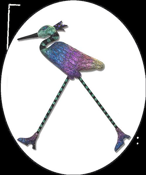 Egyptian Ibis