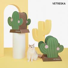 Cat Scratcher Cactus