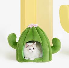Cat Cactus House