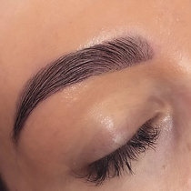 Perfect Brow Redesign.png