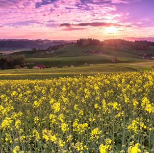 Sonnenuntergang mit LOGO - 2048.jpg