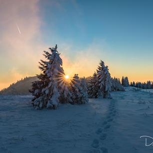 Winter auf dem Grenchenberg