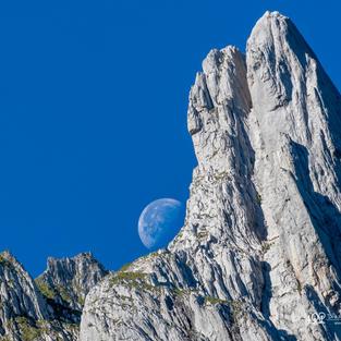 Mond1-m LOGO  FB.jpg