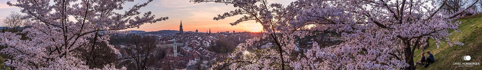Rosengarten Panorama mit Logo.jpg