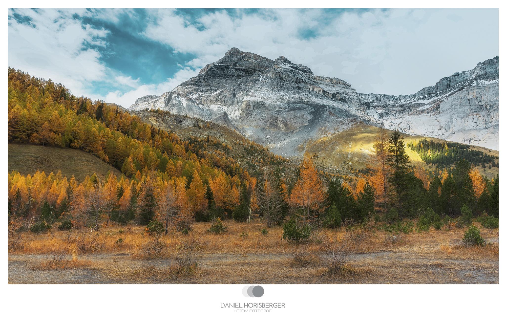 Wald-Berge-Finish  GZD -Rahmen - 2048