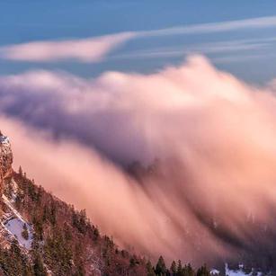 Nebelwelle am Grenchenberg