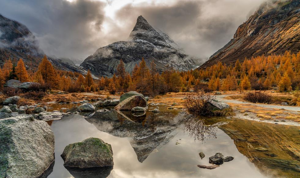 Herbst Ferbecel M LOGO - 2048 FB.jpg