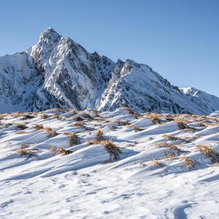 Schnee Steppe