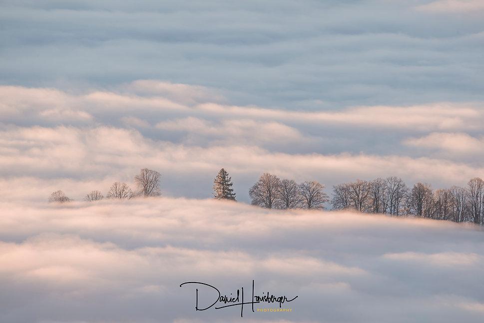 Nebel auf den Jurahöhen