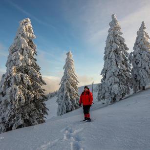 Hoti im Schnee m LOGO - 2048 FB.jpg