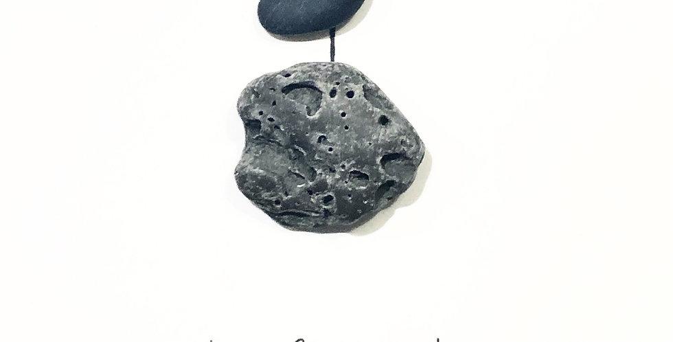 First bird on the moon