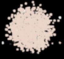 SE Circles dots.png