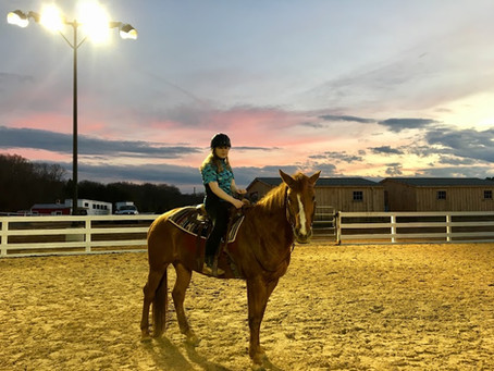 NVTRP to Build Jean and Ric Edelman Indoor Riding Arena This Summer
