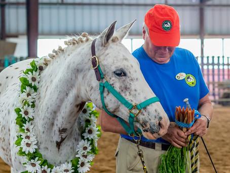 NVTRP Horse Happy to Receive 2019 Honor & Service Award at the Washington International Horse Show