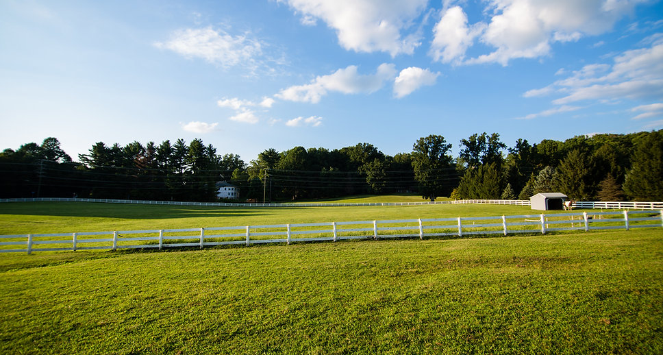 Image with text: Northern Virginia Therapeutic Riding Program - Helping Others Achieve Their Dreams
