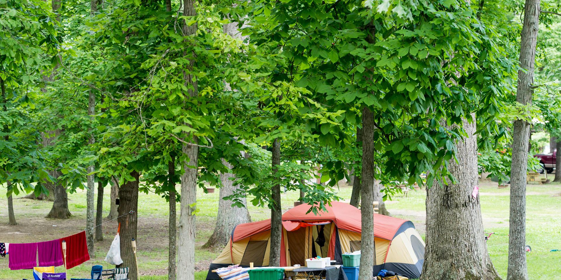 Scales-Lake-Campsite.jpg