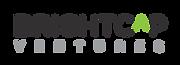 BrightCap_Logo_Print.png