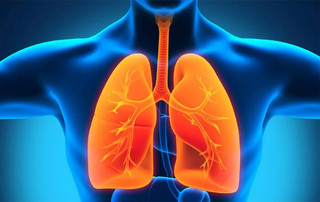 Decálogo para el paciente con asma