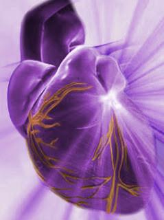 Colesterol y riesgo cardiovascular