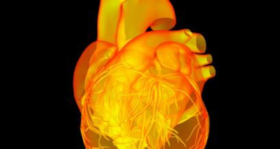 Cardiología deportiva, prueba de esfuerzo, electrocardiograma deportivo, ecocardiograma deportivo, muerte súbita, miocardiopatía dilatada